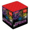 X-Black Spider (DS25-06I)