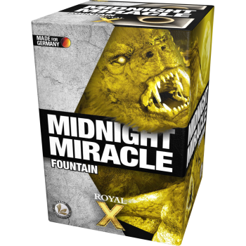 Midnight Miracle