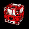 Wild Fireworks (C3645SE)