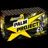 Palm Project (1434)