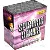 Spinning Dahlia (99514)